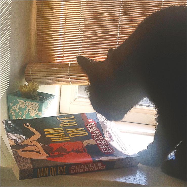 charles Bukowski Ham on Rye