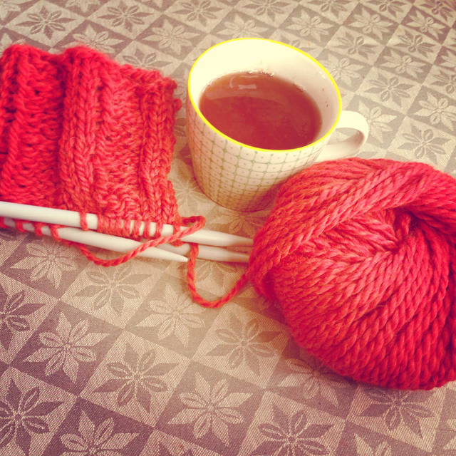 knitting project