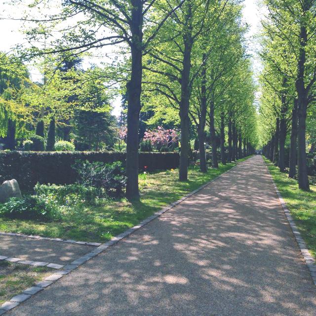 holmens kirkegaard