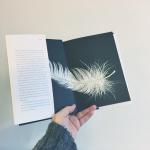 Shelf News – December 2015